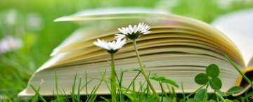 How to Ensure Learning Sustainment in your Organization